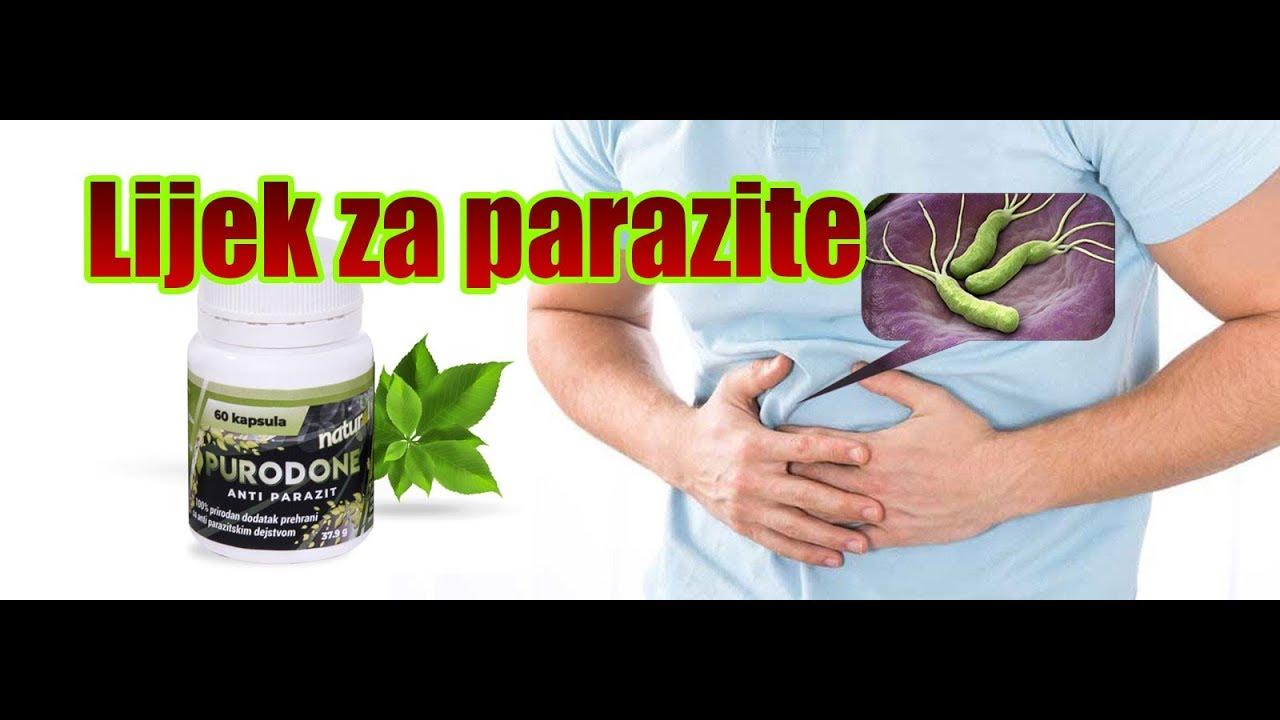 kako se lece paraziti u crevima)