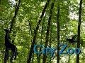City Zoo | Part 12: Zoo Tour - Zoo Tycoon 2