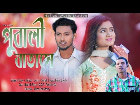 পুবালী বাতাসে | Pubali Batase |Hafizul| New Music Video | Akash Chowdhury | Hafizul Music Station