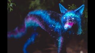 DIY Galaxy Wolf Art Doll Tutorial