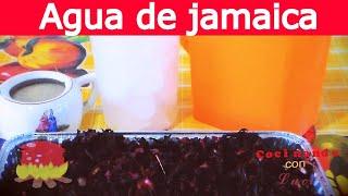Como Preparar Agua De Flor De Jamaica