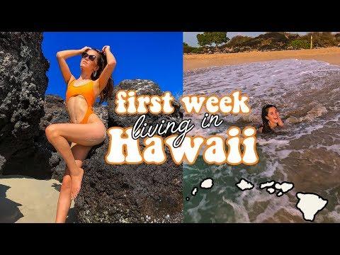 i moved to hawaii with my bff *aloha ;)*