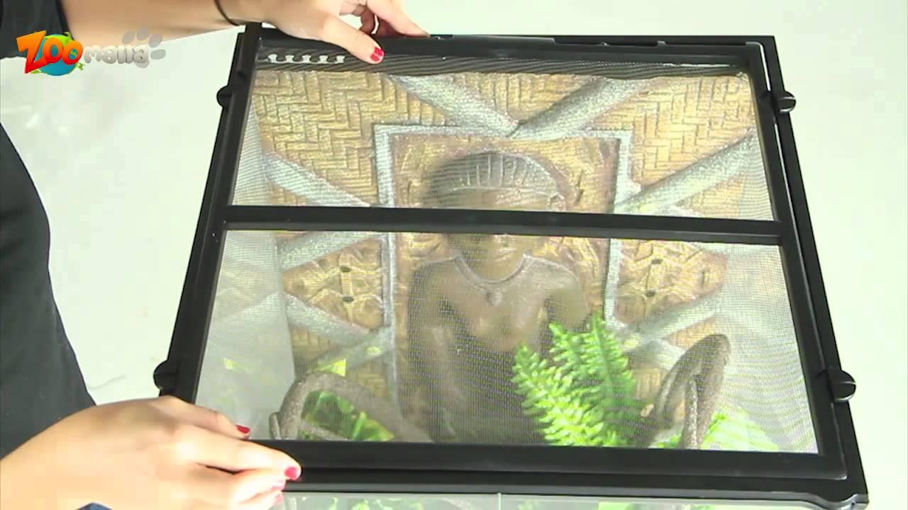 comment installer son premier terrarium