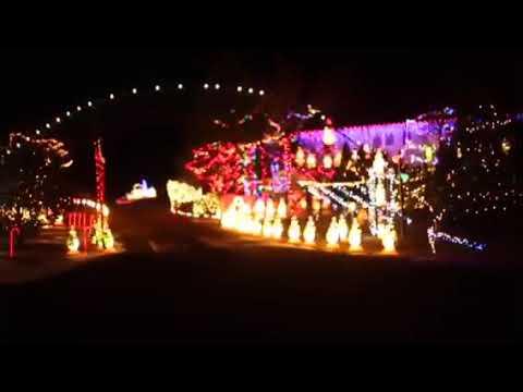 STEVE SCHWARTZ family Christmas lights
