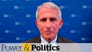 Fauci says prospect of reopening border part of active U.S. government discussions