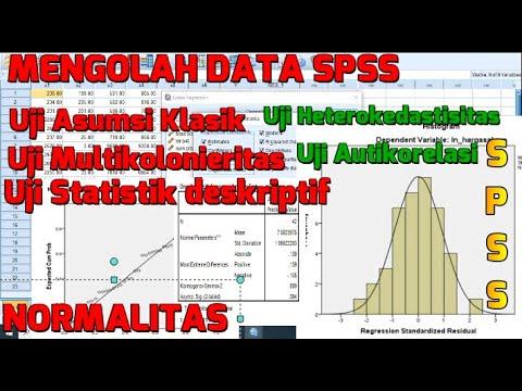 Olah Data BAB 4 Skripsi - Tutorial SPSS Uji Instrumen, Uji Asumsi Klasik, UJi Regresi Berganda.