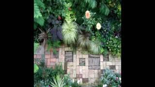 Useful Home Gardening Tips For Beginners