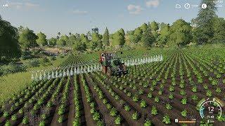 Farming Simulator 19 - Ravenport - Multiplayer - Timelapse #5