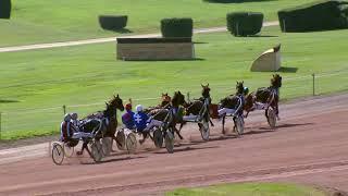 Vidéo de la course PMU PRIX DE LA POINTE DUFOUR