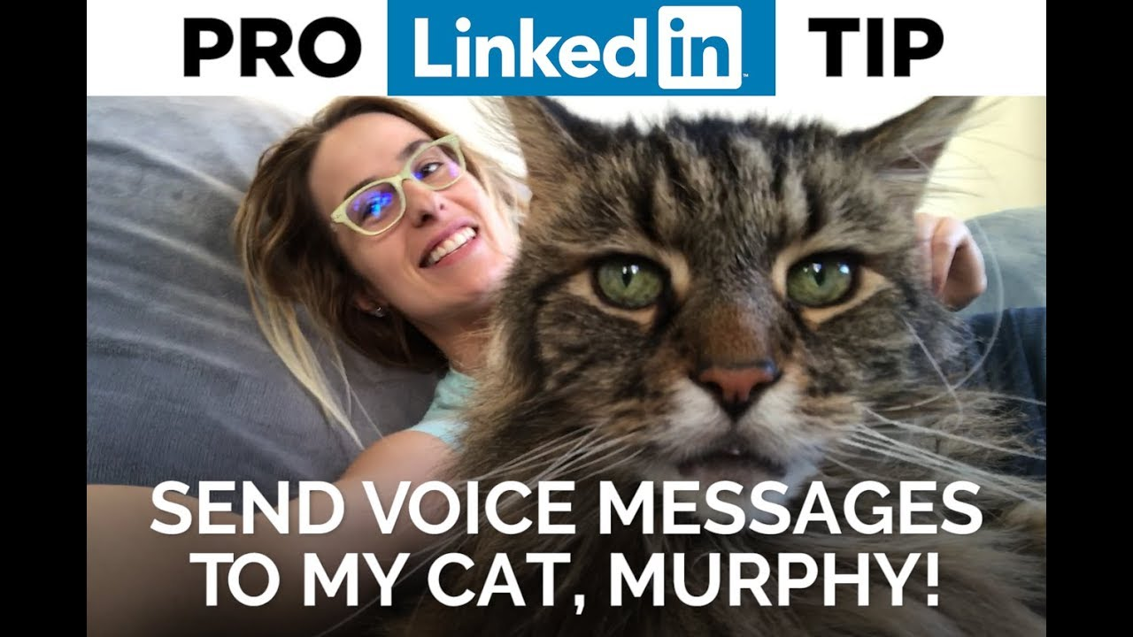 Send Voice Messages on LinkedIn