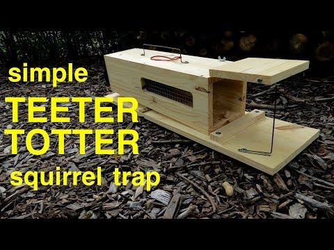 how-to-make-●-a-simple-humane-teeter-totter-squirrel-trap