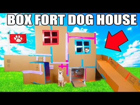 TWO STORY BOX FORT DOG HOUSE! 📦🐶 Elevator, Slide, Tv & More!