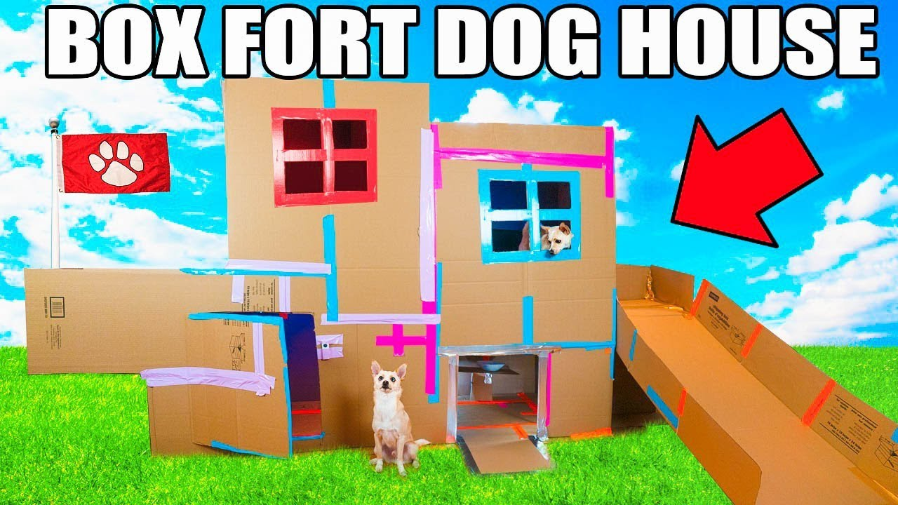 TWO STORY BOX FORT DOG HOUSE! 📦🐶 Elevator, Slide, Tv & More! on cardboard houses and shelters, prison cell house designs, mcpe house designs, cardboard house ideas, cardboard structure designs, cardboard house patterns, cardboard barn playhouse, tube house designs, cardboard house template, paint house designs, shoe box house designs, simple box house designs, cardboard house plans, boxcar house designs, cardboard shelter designs for storage, college house designs, playing card house designs, cardboard buildings, cardboard sculpture designs, cardboard village houses,