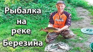 Рыбалка на реке Березина Ловля разнарыбицы на реке фидером