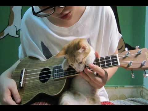 Bonfire Heart James Blunt Ukulele Cover With Chords For Guitar