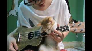 BONFIRE HEART [James Blunt] - UKULELE COVER with CHORDS for guitar and ukulele