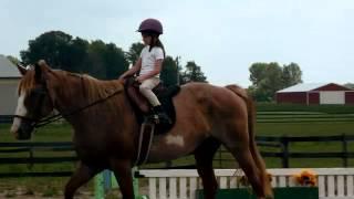 Horseback Riding Lessons at Rockin