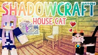 House Cat | Shadowcraft 2.0 | Ep.10