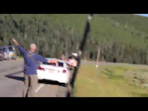 Retard tries to spray bear in Yellowstone