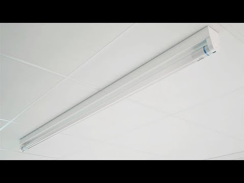 Philips MainsFit (UL Type B) T8 LED lamps