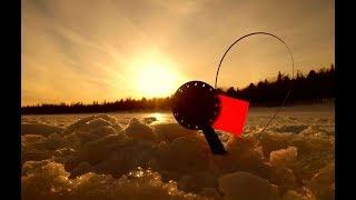 Зимняя рыбалка 2019 в Беларуси. ЛОВЛЯ ЩУКИ НА ЖЕРЛИЦЫ !!! КЛЮНЕТ ИЛИ НЕТ?