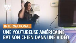 Cette youtubeuse américaine publie (par erreur) une vidéo où elle bat son chien