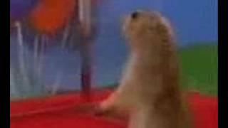 (psycho edition) Dramatic prairie dog thumbnail