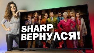Sharp вернулся - Обзор нового 4K-телевизора с бюджетной серией BL2