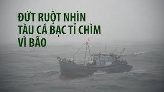 Đứt ruột nhìn tàu cá bạc tỉ bị chìm vì bão số 10