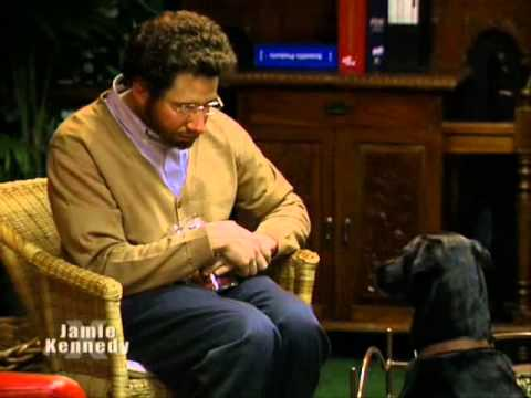 jamie kennedy experiment jkx + pet psychiatrist