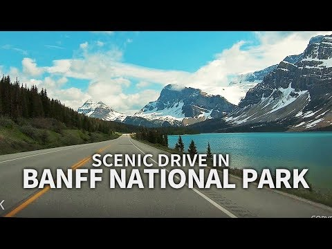SCENIC DRIVE - Banff National Park, Icefields Pkwy, Alberta, CANADA, Travel