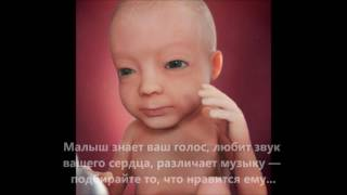 видео Развитие плода по неделям беременности