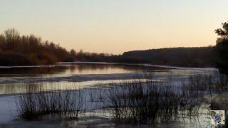 Рыбалка в Беларуси Первый пробный выезд на реку Березина 19 марта 2021г Весна 21 го года