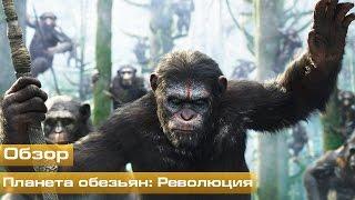 Планета обезьян: Революция (Обзор)