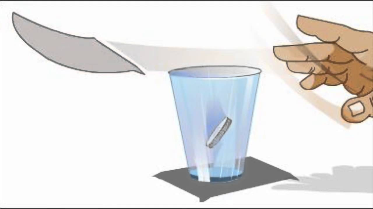 Newtons 1st Law of Inertia (Coin in cup) - YouTube