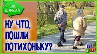 Ходьба для Здоровья - это так просто.  Как ходить, сколько ходить, зачем ходить?