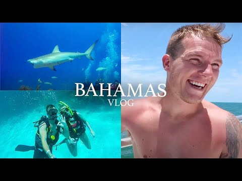 Shark Feeding Dive & First Time Diver | Bahamas Travel Vlog