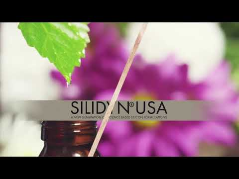 Stabilized ortho silicic acid