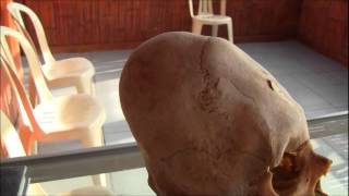 Paracas Peru: More Evidence Of A Lost Human Species
