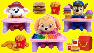 PAW PATROL Pup Chase Visits Doc McStuffins Toy Hospital