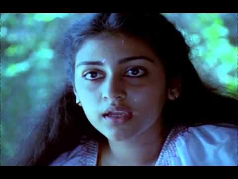 Nostalgic BGM | Thoovanathumbikal