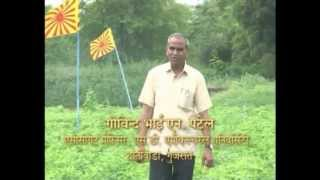 Sustainable Agriculture - Yogik Kheti - Brahma Kumaris - Hindi (Short)