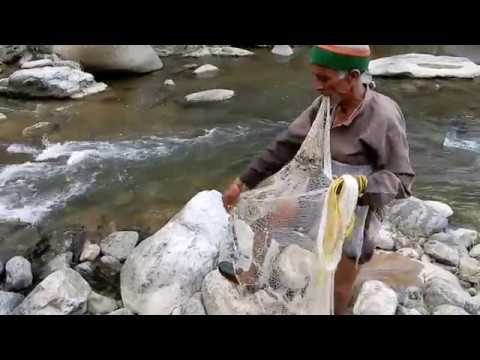 Traditional Fishing, Shimla, Himachal, India
