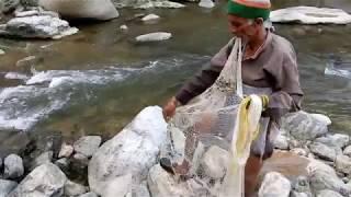 Traditional Fishing, Shimla, Himachal, India