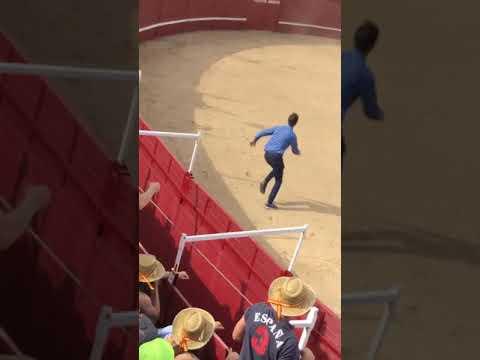 Bull Kills 60-Year-Old Assistant at Spanish Bullfighting Ring