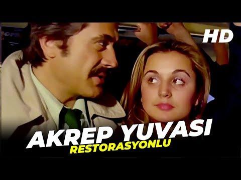 Akrep Yuvası | Cüneyt Arkın Banu Alkan Eski Türk Filmi Full İzle (Restorasyonlu)