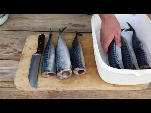 Как коптить рыбу холодного копчения видео