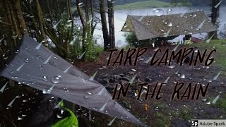 Tarp Camping In The Rain | Fishing | Camping In The Forest | Camping | Wild Camping Scotland