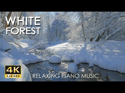 4K White Forest - Relaxing Piano Music & River Sounds - Snowy Winter Nature Video - Ultra HD