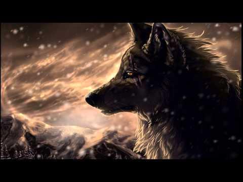 slide/ fotos de lobo/ efeito caneta magica